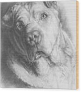 Maxie Wood Print