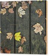 Original Autumn Foliage Wood Print
