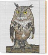 Owl In Pose Wood Print