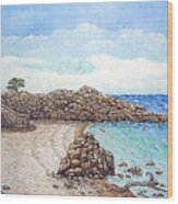 Pacific Grove Wood Print