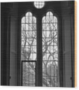 Palace Window Wood Print