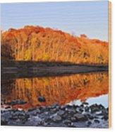 Palisades-kepler State Park - Mt. Vernon, Ia Wood Print