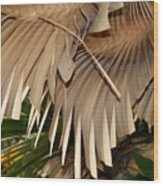 Palm Bark Wood Print