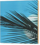 Palm Frond Silhouette Wood Print