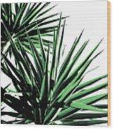 Palm Wood Print