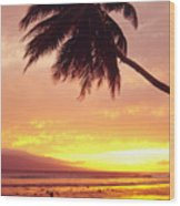 Palm Over The Beach Wood Print
