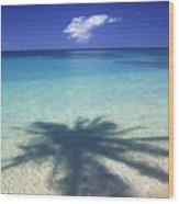 Palm Shadows Wood Print