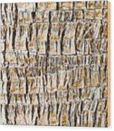 Palm Trunk Wood Print