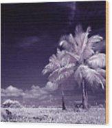 Palms  Wood Print