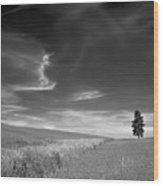 Palouse Farms Wood Print