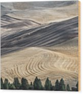 Palouse Field 2740 Wood Print