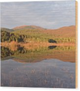 Palsko Lake Wood Print