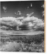 Panorama Of A Valley In Utah Desert With Blue Sky Wood Print