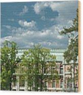 Panorama Of The Museum-estate Tsaritsyno Wood Print