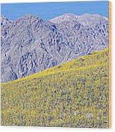 Panoramic View Of Desert Gold Yellow Wood Print