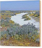 Panoramic View Of White Salt And Desert Wood Print