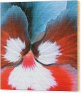 Pansy Power 86 Wood Print