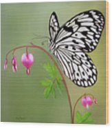 Paper Kite Butterfly Wood Print by Thanh Thuy Nguyen