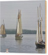 Parade Of Sails Wood Print