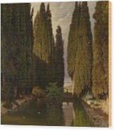 Park Near Rome Wood Print