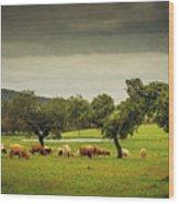 Pasturing Cows Wood Print