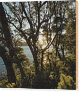 Patagonia Landscape Wood Print