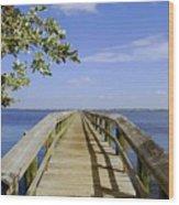 Path To Paradise Wood Print