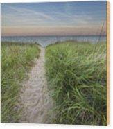 Path To Pierport Beach Wood Print