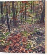 Path To Sope Creek Wood Print