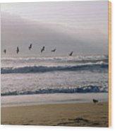 Pelican Brief Wood Print