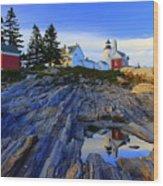 Pemaquid Point Light Reflections Wood Print