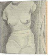 Pencil Sketch Wood Print