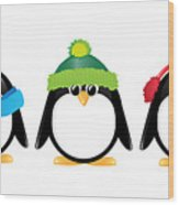 Penguins Isolated Wood Print by Jane Rix