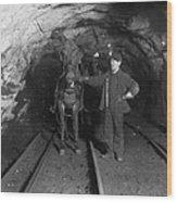 Pennsylvania: Coal Mine Wood Print