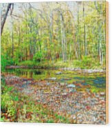 Pennsylvania Stream In Autumn, Digital Art Wood Print