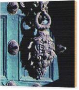 Peruvian Door Decor 6 Wood Print