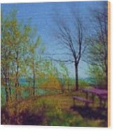Picnic Table By The Lake Wood Print