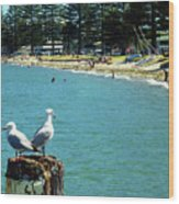 Pilot Bay Beach 4 - Mount Maunganui Tauranga New Zealand Wood Print