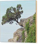 Pine Tree On A Rock Wood Print