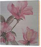 Pink Floral Wood Print by Ginny Youngblood