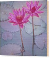 Pink Lily Blossom Wood Print