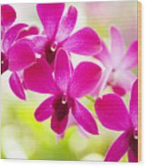 Pink Orchid Lei Wood Print