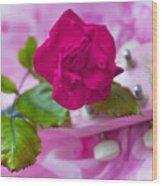 Pink Rose 5 Wood Print