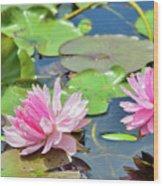 Pink Water Lily Series Wood Print