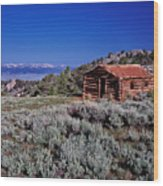 Pioneer Cabin Wood Print