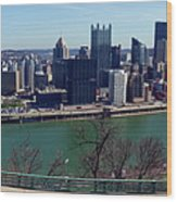 Pittsburgh Panorama Wood Print