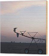 Pivot Irrigation And Sunset Wood Print