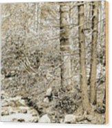 Pocono Mountain Stream, Pennsylvania, Digital Art Wood Print