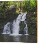 Pocono Mountains - Flowing Cascades Wood Print