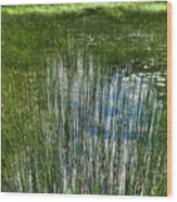 Pond Grasses Wood Print
